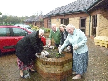 Residents spring into action by planting bulbs